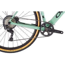 Orbea Gain D30 1X pastel green/black